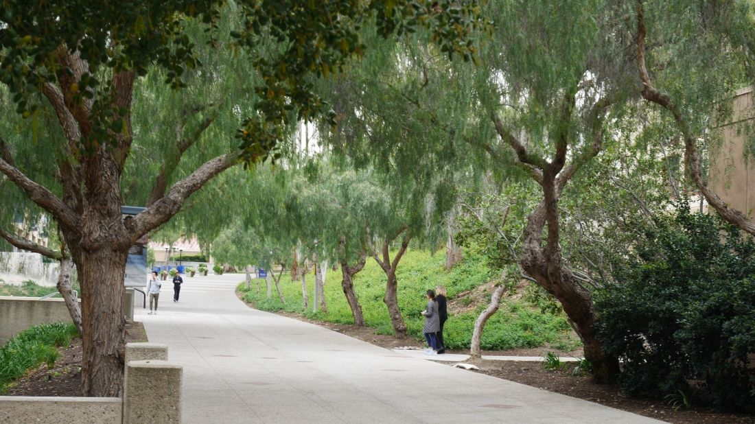 UCIrvine_Campus_ (6).JPG